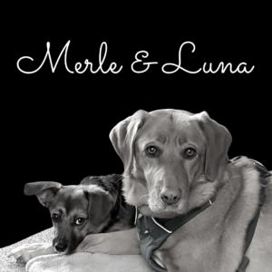 Merle & Luna